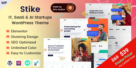 Stike v2.2 - IT Startups WordPress Theme